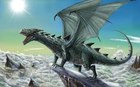 Картинка Дракон, Крылья, Фэнтези