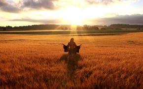 Картинка девушка, Поле, горизонт, солнжце