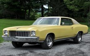 Картинка желтый, Chevrolet, Шевроле, хром, Muscle car, 1972, Monte Carlo, Монте Карло