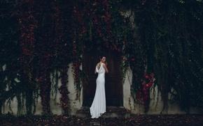 Обои платье, тату, невеста