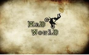 Обои велосипед, буквы, надпись, мопед, пятна, мотоцикл, сумасшедший мир, mad world, бежевый хаки фон