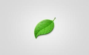 Картинка капли, лист, зеленый, green, минимализм, светлый фон, leaf