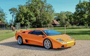 Картинка Lamborghini, 2000, ламборджини, Diablo, диабло