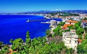 Картинка пальмы, горы, Франция, дома, панорама, деревья, побережье, скала, Nice, море, маяк, пейзаж, Ницца, камни