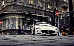 Картинка Maserati, белая, спортивная, white, GranTurismo, мазерати