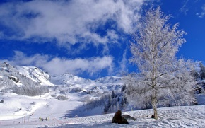 Картинка небо, облака, снег, берёза, горнолыжный спуск