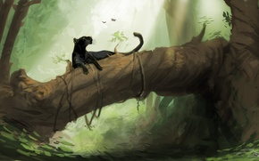 Обои черная, пантера, бабочки, джунгли, багира, лес