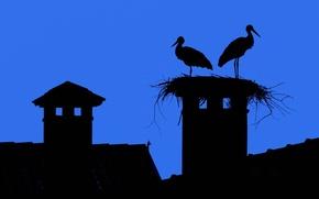 Картинка крыша, небо, город, обои, силуэт, гнездо, аист, черепица, дымоход, дымарь