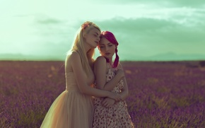 Картинка поле, лето, девушки, платье, пара