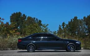 Картинка чёрный, bmw, профиль, диски, black, синие, f10, wheels.бмв, суппорты