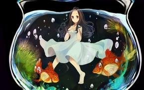 Картинка пузыри, аквариум, золотые рыбки, Девочка, белое платье
