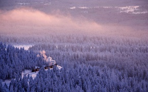 Картинка поезд, лес, зима, Германия, Саксония-Анхальт, дорога