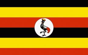 Картинка Черный, Желтый, Флаг, Оранжевый, Uganda, Уганда, Горизонтально