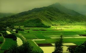 Обои холмы, природа, зелень, green