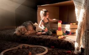 Картинка собака, уют, дом, мальчик