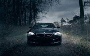 Картинка BMW, Dark, AC Schnitzer, Fog, Forest, Horses