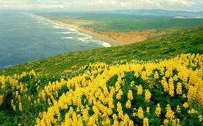 Обои океан, природа, nature, california, landscape
