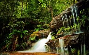 Картинка зелень, лес, трава, деревья, скалы, водопад