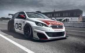 Картинка гонки, Peugeot, пежо, 308, 2016, Racing Cup