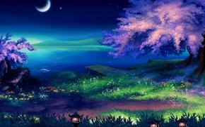 Картинка трава, озеро, берег, месяц, Ночь, сакура, фонари, цветение