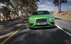 Картинка дорога, Bentley, Continental, Speed, бентли, континенталь, 2015