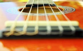 Картинка макро, оранжевый, гитара, venitomusic
