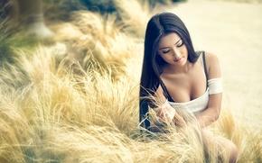 Картинка поле, волосы, брюнетка, красавица, азиатка