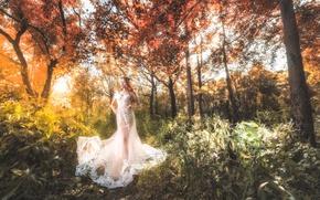 Обои азиатка, платье, прогулка, лес, девушка, стиль