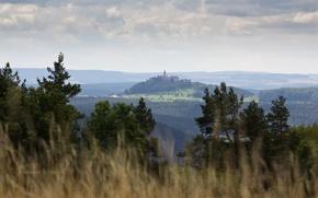 Картинка трава, деревья, замок, холмы