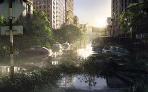 Картинка Арт, Game, The Last of Us, Naughty Dog, Sony Computer Entertainment, Одни из Нас