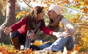 Картинка лес, листья, Осень, желтые, пара