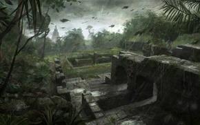 Картинка игра, Tomb Raider, Лара
