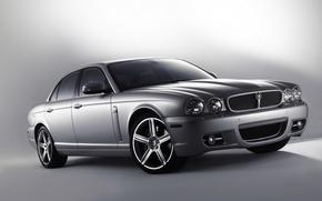 Обои Ягуар, Jaguar, серебрянный