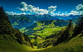 Картинка sky, trees, mountains, clouds, leaves, Stanserhorn, Swiss Alps. Switzerland