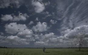 Обои надписи, пустота, грусть, свобода, пасмурно, полет, одиночество, степь