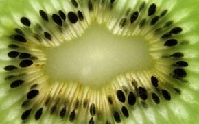 Картинка фрукт, Kiwi, Киви