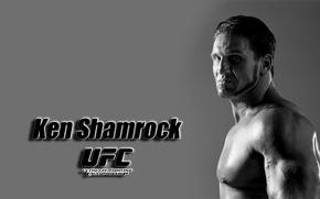 Картинка фон, widescreen, обои, wallpaper, боец, широкоформатные, background, полноэкранные, HD wallpapers, UFC, смешанные боевые искусства, широкоэкранные, …