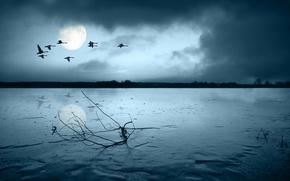 Картинка небо, облака, свет, птицы, ночь, река, луна, берег, стая, силуэты