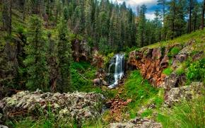 Картинка лес, небо, деревья, горы, природа, водопад