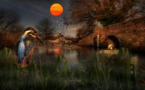 Картинка рендеринг, мост, арт, обои от lolita777, берег, дерево, птицы, вечер, водоем, сумерки, солнце, трава, зимородок, …