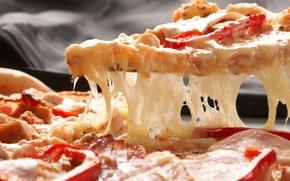 Обои сыр, помидоры, паприка, ветчина, пицца