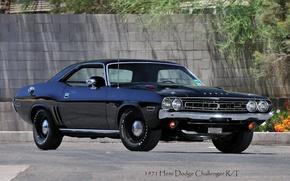 Обои Dodge, Challenger, R/T, Hemi, 1971