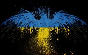 Обои украина, Стиль, обои, орел
