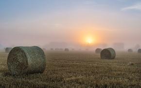 Картинка поле, туман, утро, сено