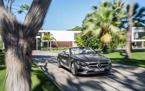 Обои Mercedes-Benz, скорость, кабриолет, мерседес, S-Class, 0015, S 000, A217