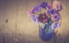 Картинка water, flowers, bottle