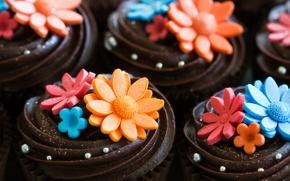 Картинка цветы, шоколад, сладости, украшение, пирожное, крем, десерт, кекс