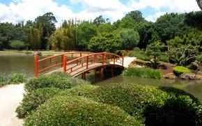 Обои парк, мост, Австралия, Japenese Garden, Toowoomba, деревья, пруд