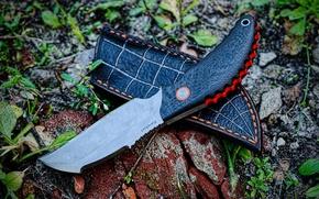 """Картинка трава, оружие, нож, Sterch """"Karakurt"""""""
