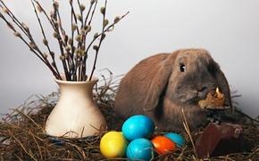 Картинка яйцо, свеча, кролик, пасха, ваза, верба, easter